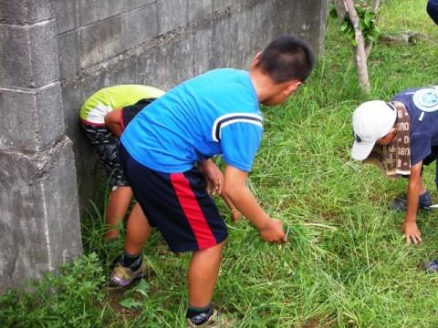 ソフトボールの子どもたちは草ひき